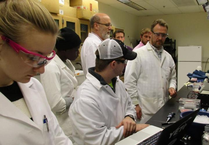 Students working on computers in lab